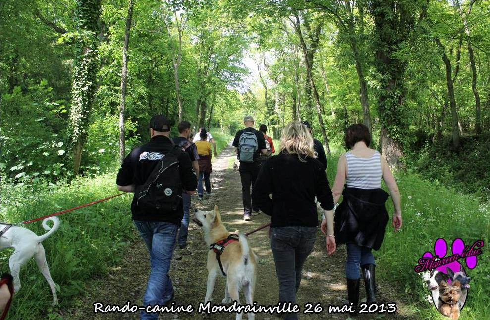 maureen-education-canine-caen-3